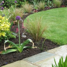 Planting | Hampshire | Avenue Landscapes